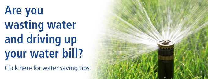Lawn Water Tips